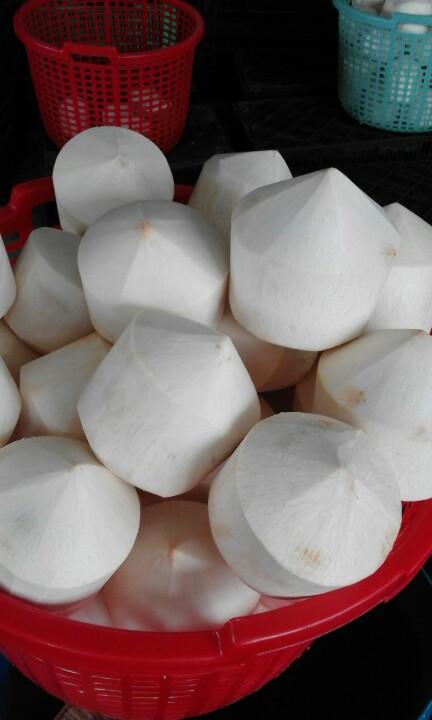 dừa tươi gọt vỏ hình kim cương xuất khẩu