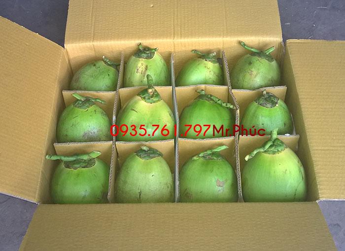 Dừa xiêm xanh đóng thùng 12 trái